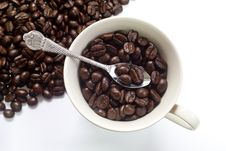 Coffee Bean In Cup. Stock Photos