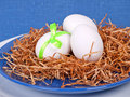 Free Easter Composition: Nest With Three White Eggs Stock Image - 19078821