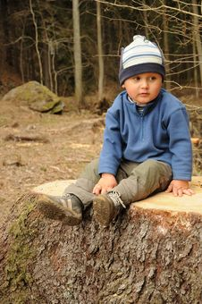 Free Boy On Stump Stock Image - 19070841