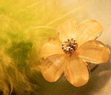 Free Beautiful Women S Hairgrip Flower Stock Images - 19070954