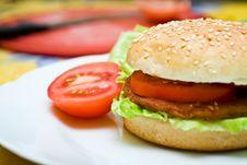 Free Healthy Homemade Hamurger Stock Photo - 19078950
