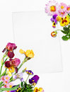 Free Card With Flowers Royalty Free Stock Photography - 19082587
