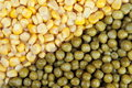 Free Corn & Peas Stock Photo - 19088060