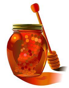 Free Honey Buckwheat Royalty Free Stock Photos - 19081168