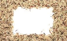 Rice Frame Stock Photos