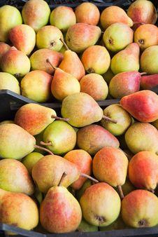Ripe Pears Stock Image