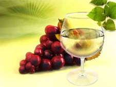 Free Wineglass And Grapes Stock Photography - 19085072