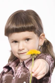 Free Young Girl With Yellow Flower Stock Image - 19085621