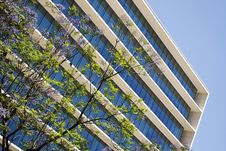 Free Office Building Royalty Free Stock Photography - 19085967