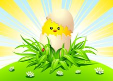 Free Happy Easter! Royalty Free Stock Photos - 19087668