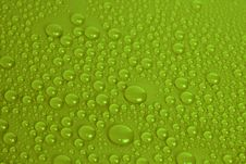 Free Water Drops Stock Photo - 19088740