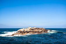 Seal Island Mossel Bay Stock Photo