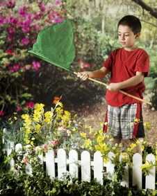 Free Young Butterfly Catcher Royalty Free Stock Image - 19091566