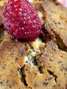 Free Raspberry Muffin Royalty Free Stock Photography - 19093917
