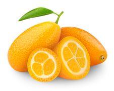 Free Kumquat Stock Image - 19095861