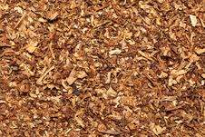 Sattering Of Tobacco. Background Royalty Free Stock Photography