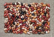 Free Color Beans. Royalty Free Stock Photos - 19097198