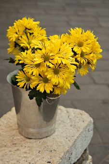 Free Cheerful Yellow Flowers In A Bucket Stock Image - 19097601