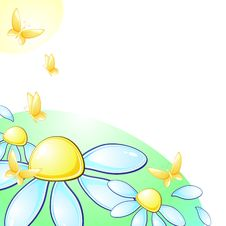 Glossy Daisies And Butterflies With Copy Space Stock Image
