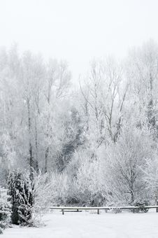 Winterscape Royalty Free Stock Images