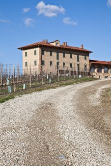 Free Italian Villa With Vineyard: Spring Season Stock Photography - 19099432