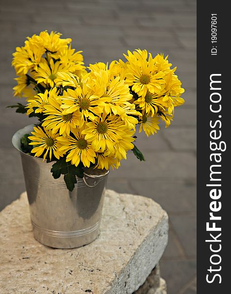 Cheerful Yellow Flowers in a Bucket