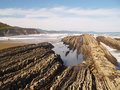 Free Geologic Folds In Zumaias Beach Royalty Free Stock Photography - 1913147