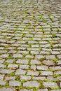 Free Cobblestone Pavement Royalty Free Stock Image - 1916176