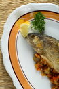 Free Oven Trout Royalty Free Stock Photography - 1919037