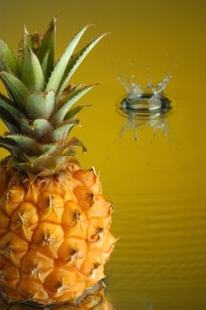 Free Pineapple 4 Stock Images - 1911084