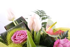 Free Flowers Royalty Free Stock Photography - 1913917