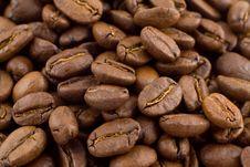 Free Coffee Beans Royalty Free Stock Photo - 1915875