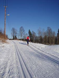 Free Skiing Stock Photo - 1919710