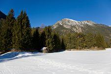 Free Winter Mountain View Royalty Free Stock Photo - 19102225