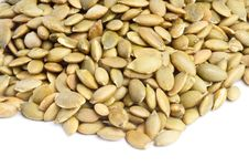 Free Toasted Pumpkin Seeds Royalty Free Stock Photography - 19106667