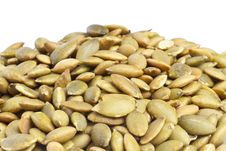 Free Toasted Pumpkin Seeds Royalty Free Stock Photography - 19106687