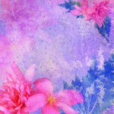 Stylized Floral Frame Stock Photography