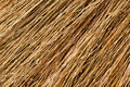 Free Broom Texture Stock Photo - 19113690