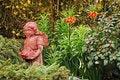 Free Garden Fairy Stock Photography - 19117882