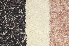 Free 3 Colours Rice Stock Image - 19110311