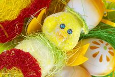Colour Easter Decoration With Duck Royalty Free Stock Image