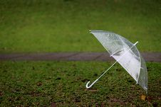 Free Umbrella Stock Photography - 19113612