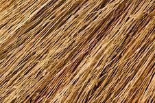 Free Broom Texture Stock Photo - 19113690