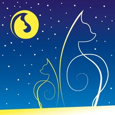 Two Cats At Night On A Roof Royalty Free Stock Images