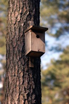 Nest Box Royalty Free Stock Photos