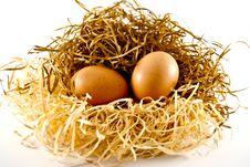 Free Eggs Royalty Free Stock Photo - 19118845
