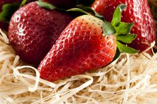 Free Strawberries In Straw Royalty Free Stock Images - 19118869