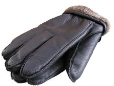 Free Pair Of Gloves Stock Photography - 19119262