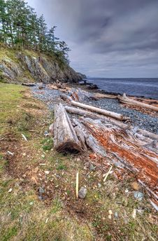 Wilderness Shoreline Royalty Free Stock Images