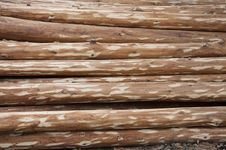 Free Wood Royalty Free Stock Photography - 19122947